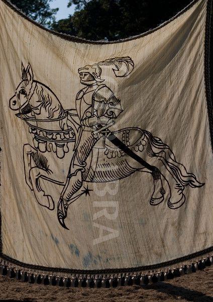 457133-medieval-flag.jpeg (424×600)