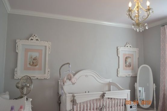 Sherwin Williams Passive Grey Home Wall Colour Grey Nursery Walls True Grey Paint Color