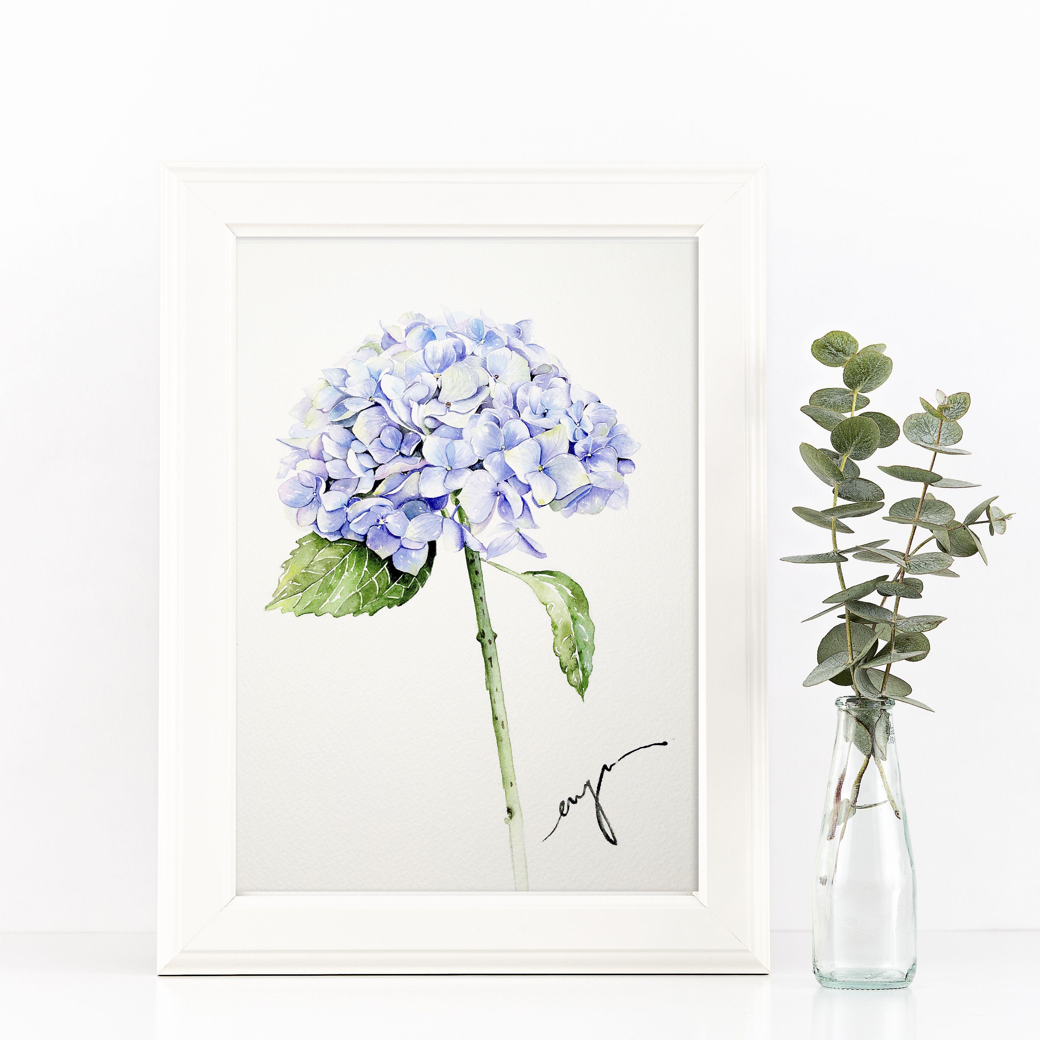 Hydrangea in frame
