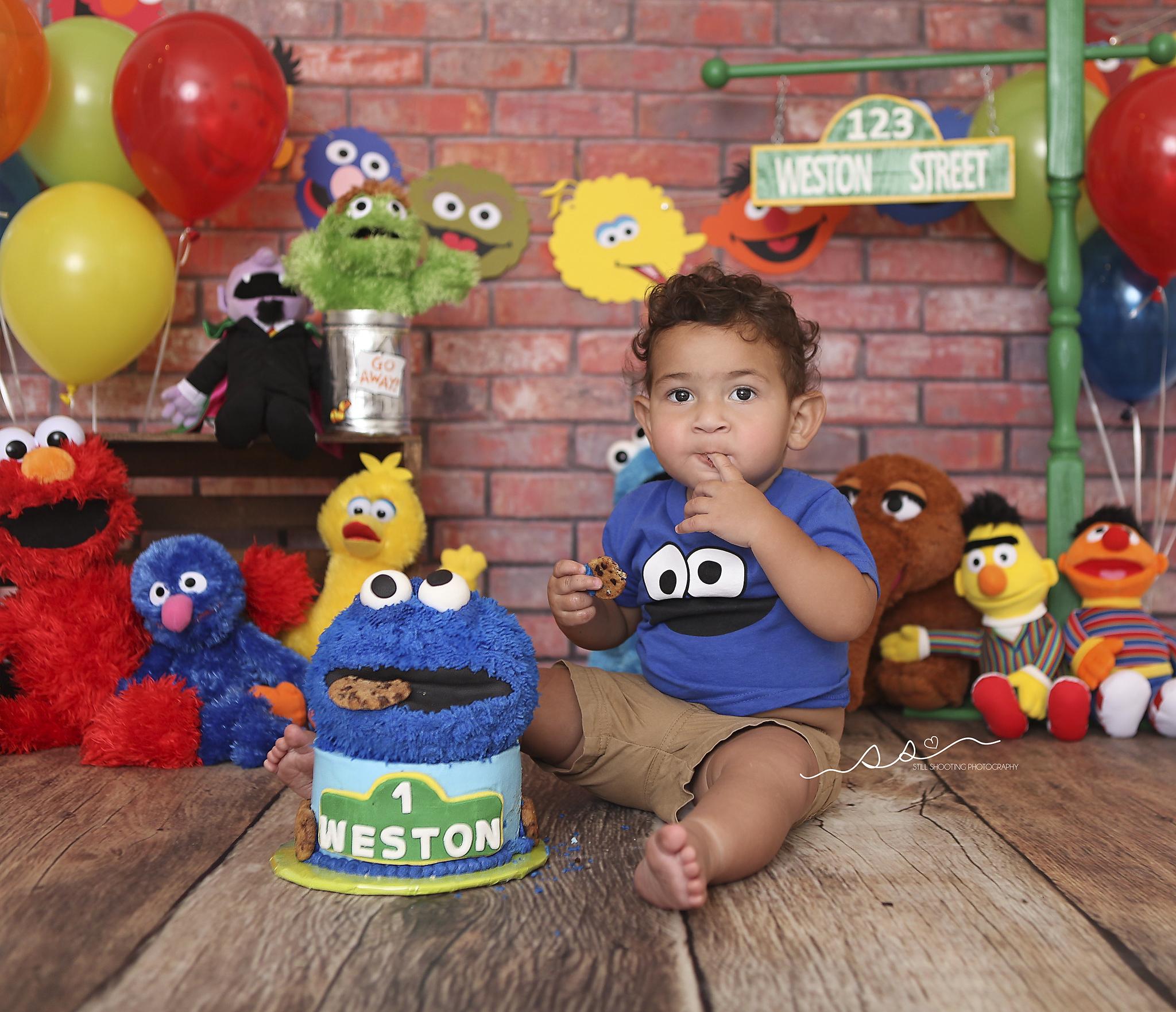 Sesame Street Cake Smash Cookie Monster Elmo Big Bird Bert