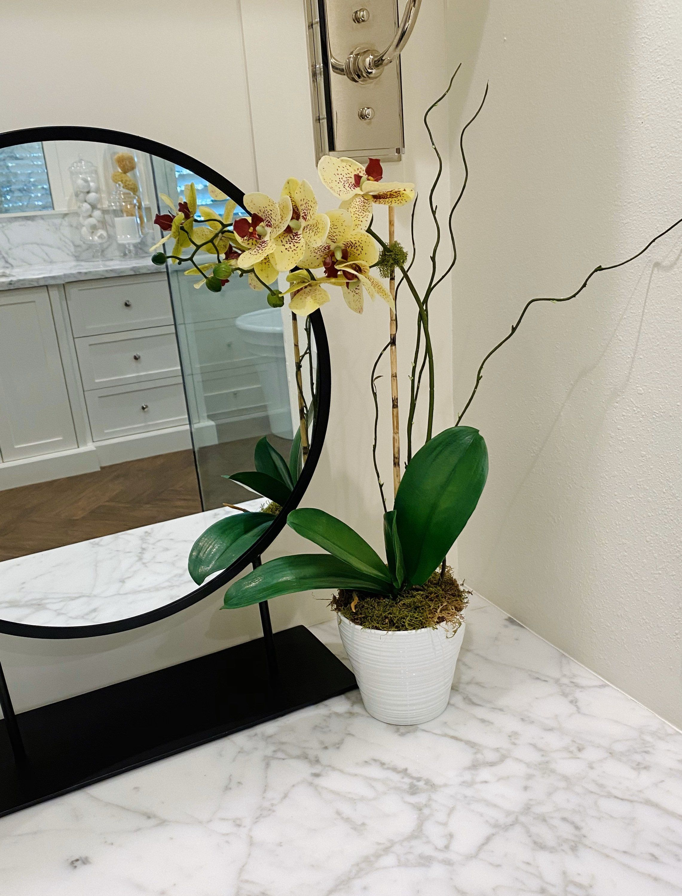 Pin on Orchid decor