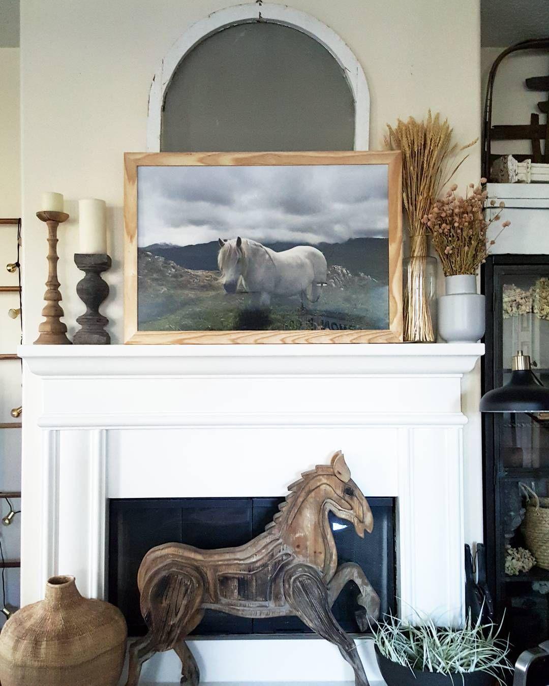 beesnburlap Instagram White Horse Photograph by @jacksstudio and ...