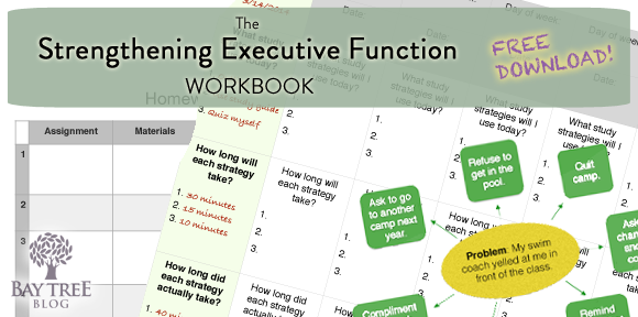 Strengthening Executive Function >> Free Download The Strengthening Executive Function Workbook 10