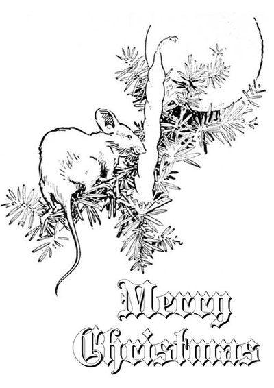 Weihnachten Malvorlagen, Weihnachtsaktivität, Färbung in | zeichnen ...