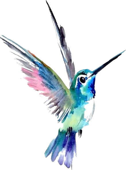 Watercolor Painting Art Hummingbird Drawing Hummingbird Tattoo Png Watercolor Png Down Hummingbird Tattoo Watercolor Hummingbird Drawing Hummingbird Painting