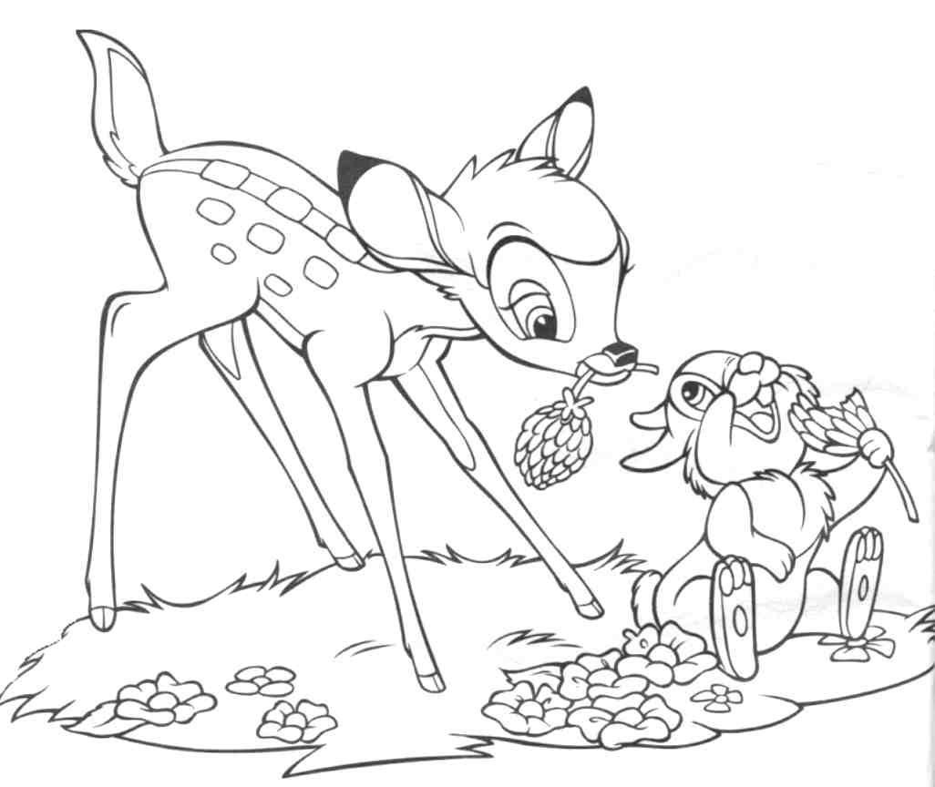 Bambi <3 http://shop.balducci.it/ https://www.facebook.com ...