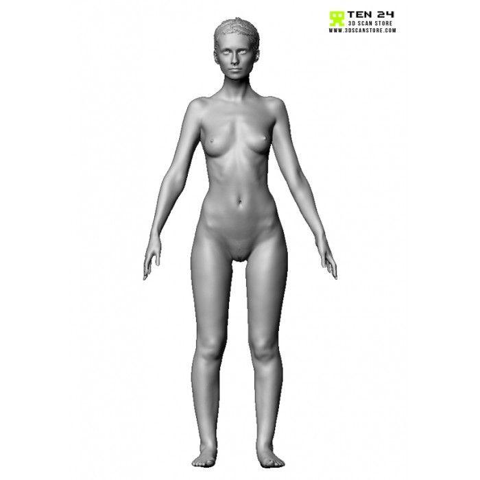 Colour Female Anatomy Bundle 3D scanshuman t