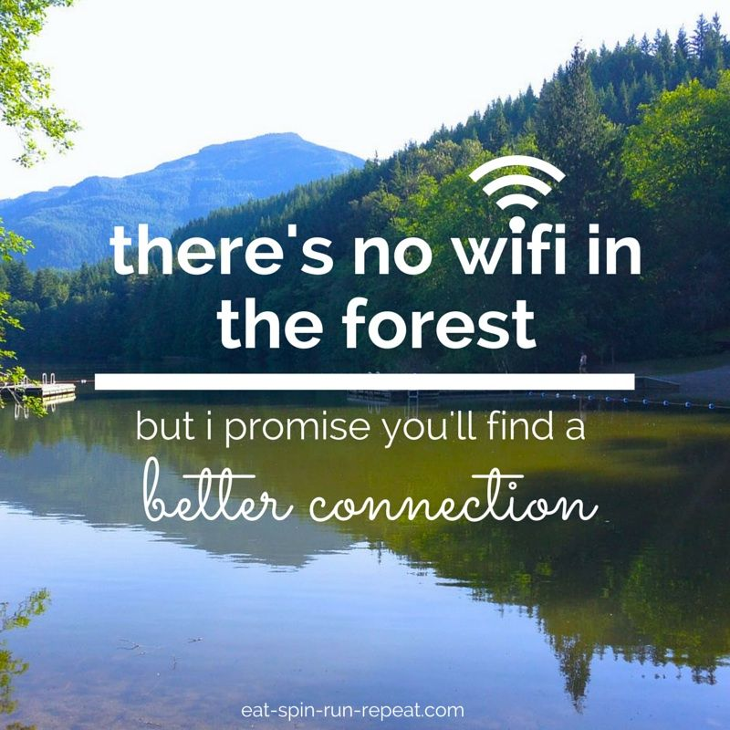 Image result for there is no wifi in the forest quotes