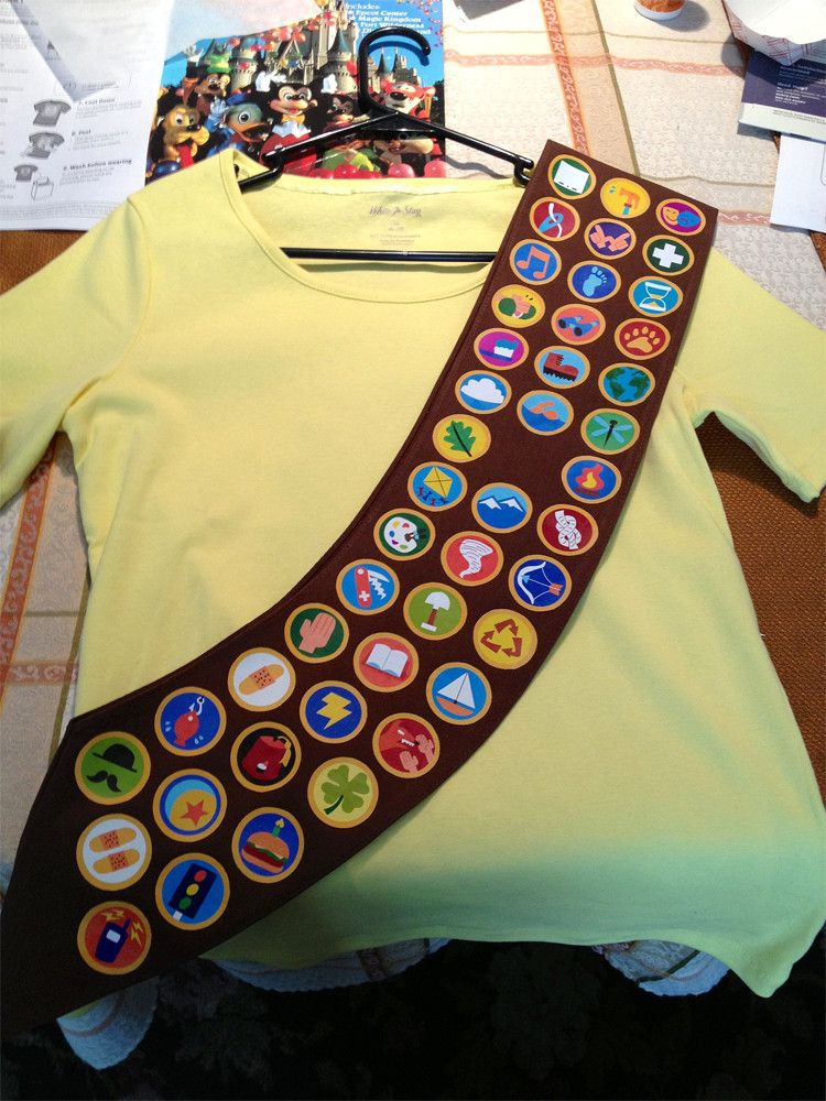 2020 Halloween Costume Fancy Ideas For Little Boys Nerdy Crafts by Tinker Kate: Wilderness Explorer Sash | Nerdy