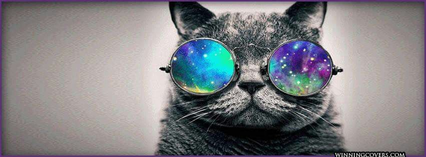 Cover Photos For Fb Timeline Art Facebook Inspiring Pictures Pretty Hipster Cat Photography
