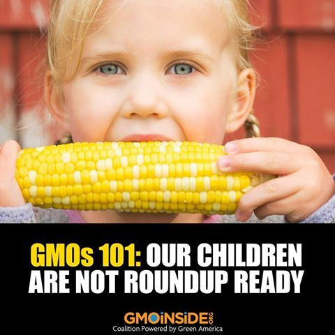 Pin By This Is Zero Hour Listen To T On Gmos Exposed Gmo Facts