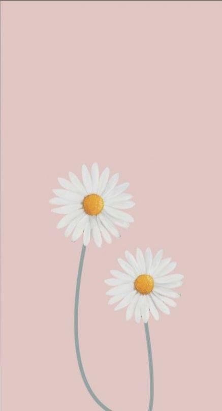 Trendy wall paper flowers whatsapp 30 ideas