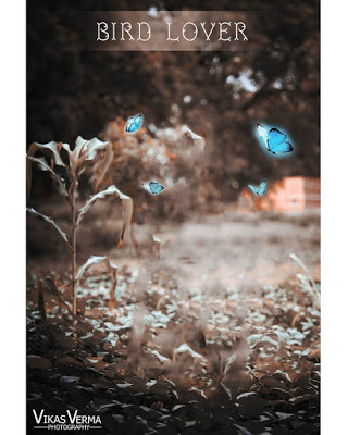 Picsart Hd Wallpaper Picsart Background Images Free Download In 2021 Photo Background Images Love Background Images Iphone Background Images