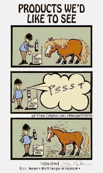 We equestrians and horse lovers will understand the desire for a revolutionary product such as this.