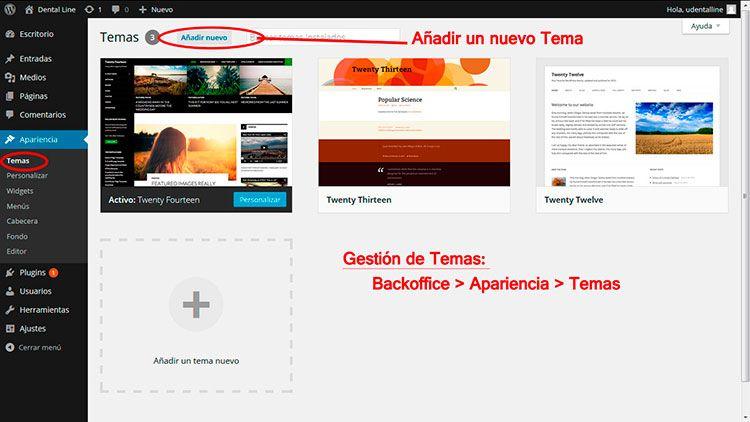 Diseño de paginas web en Murcia con Wordpress: Instalar una tema o ...