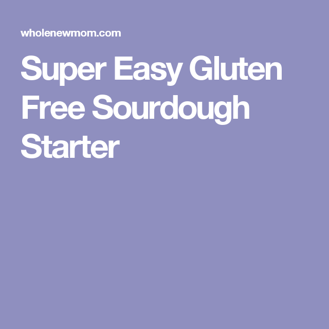 Super Easy Gluten Free Sourdough Starter