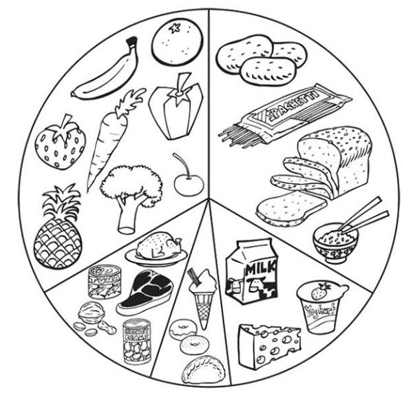 MyPlate is the current nutrition guide published by the USDA Center for Nutrition Policy and Promotion a food circle depicting a place setting with a plate and glass