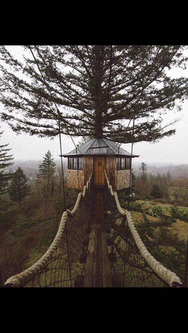 Tree house #Iwantthis