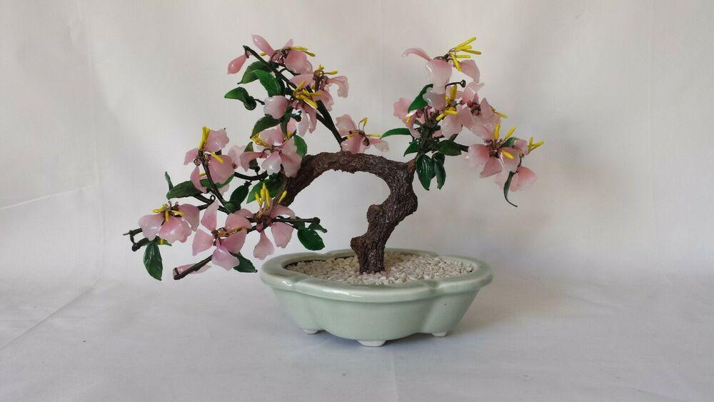 Glass Jade Sakura Cherry Blossom Potted Bonsai Tree 11 25 X 8 5 Pre Owned Bonsai Tree Sakura Cherry Blossom Bonsai