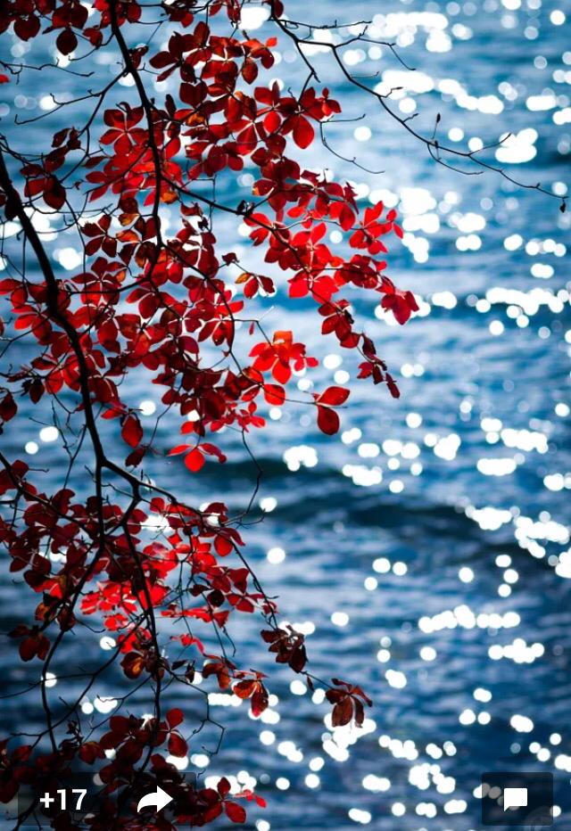 Wind Across The Water