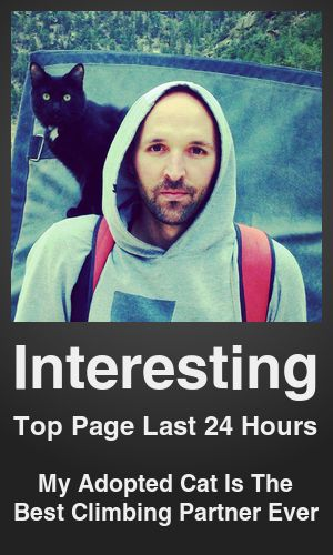 Top Interesting link on telezkope.com. With a score of 17628. --- My Adopted Cat Is The Best Climbing Partner Ever. --- #interesting --- Brought to you by telezkope.com - socially ranked goodness