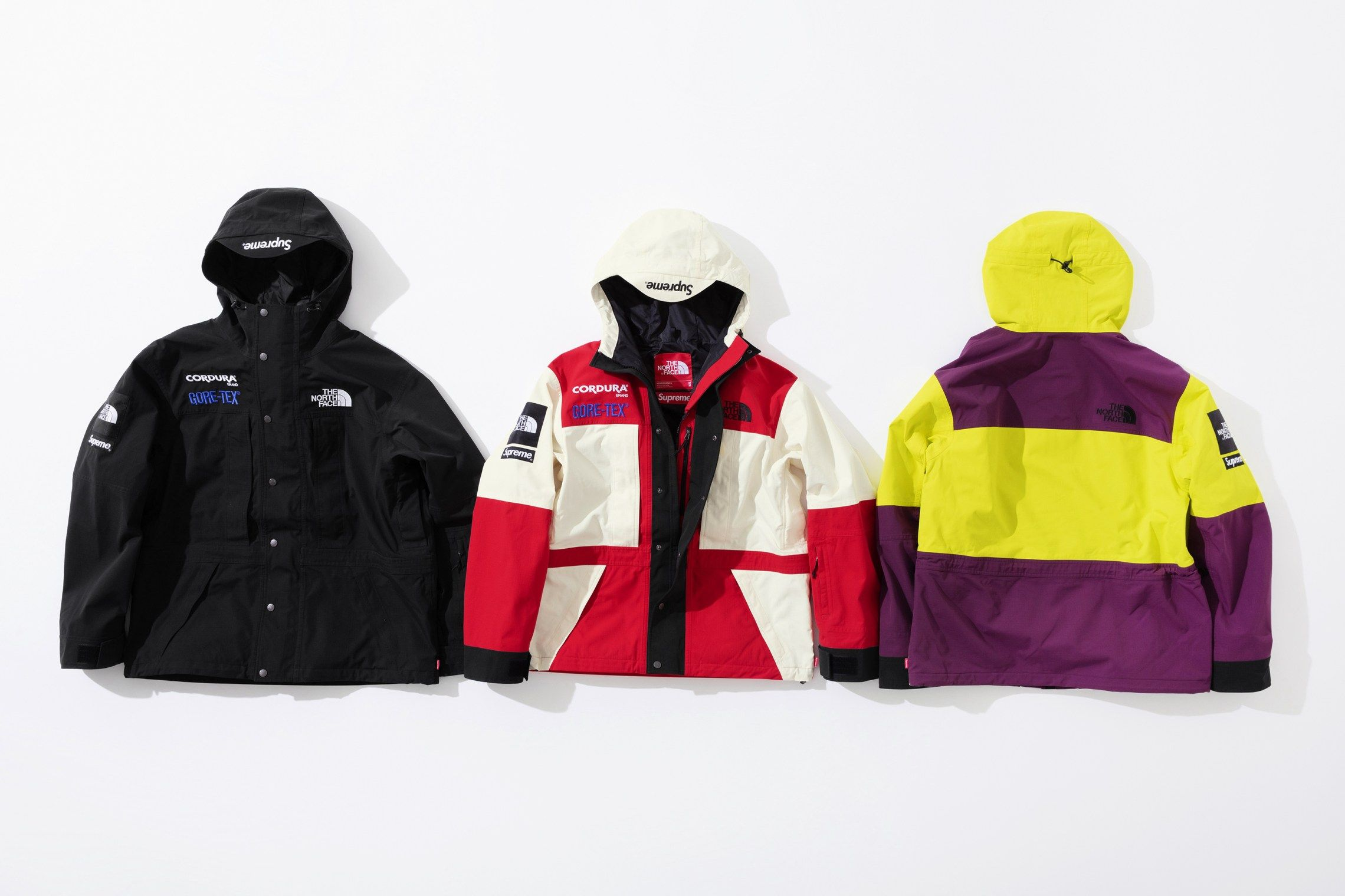 Supreme X The North Face Expedition Jacket The North Face Jackets Diabetic Dog