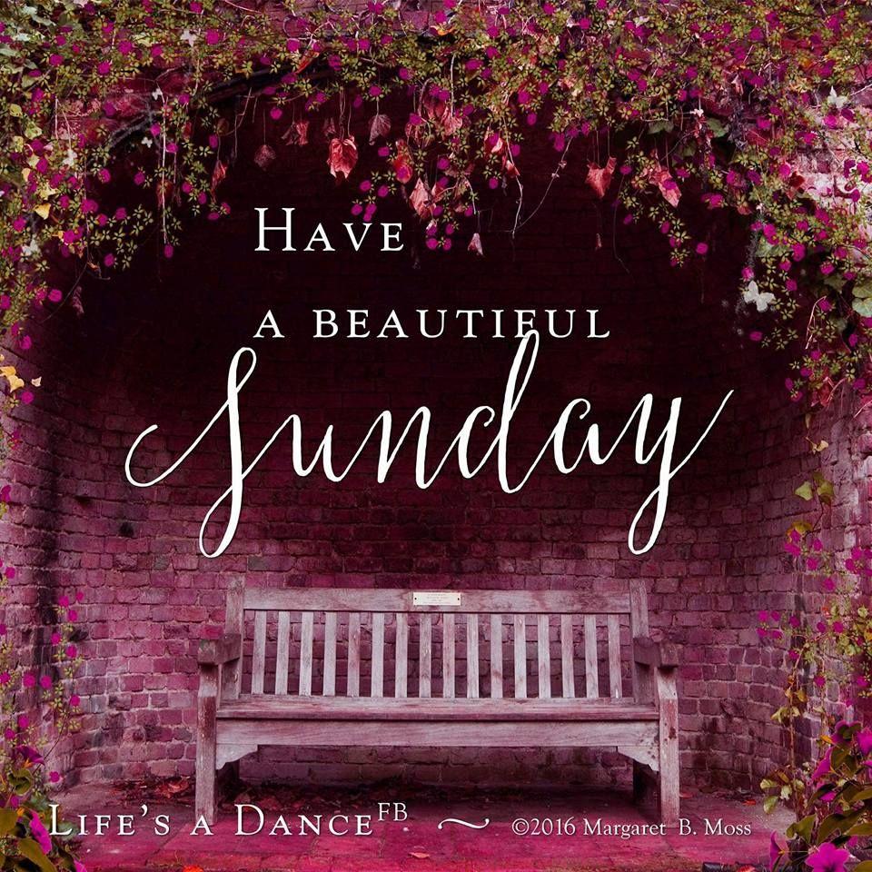 Happy Sunday! Enjoy your day of rest. Sunday morning
