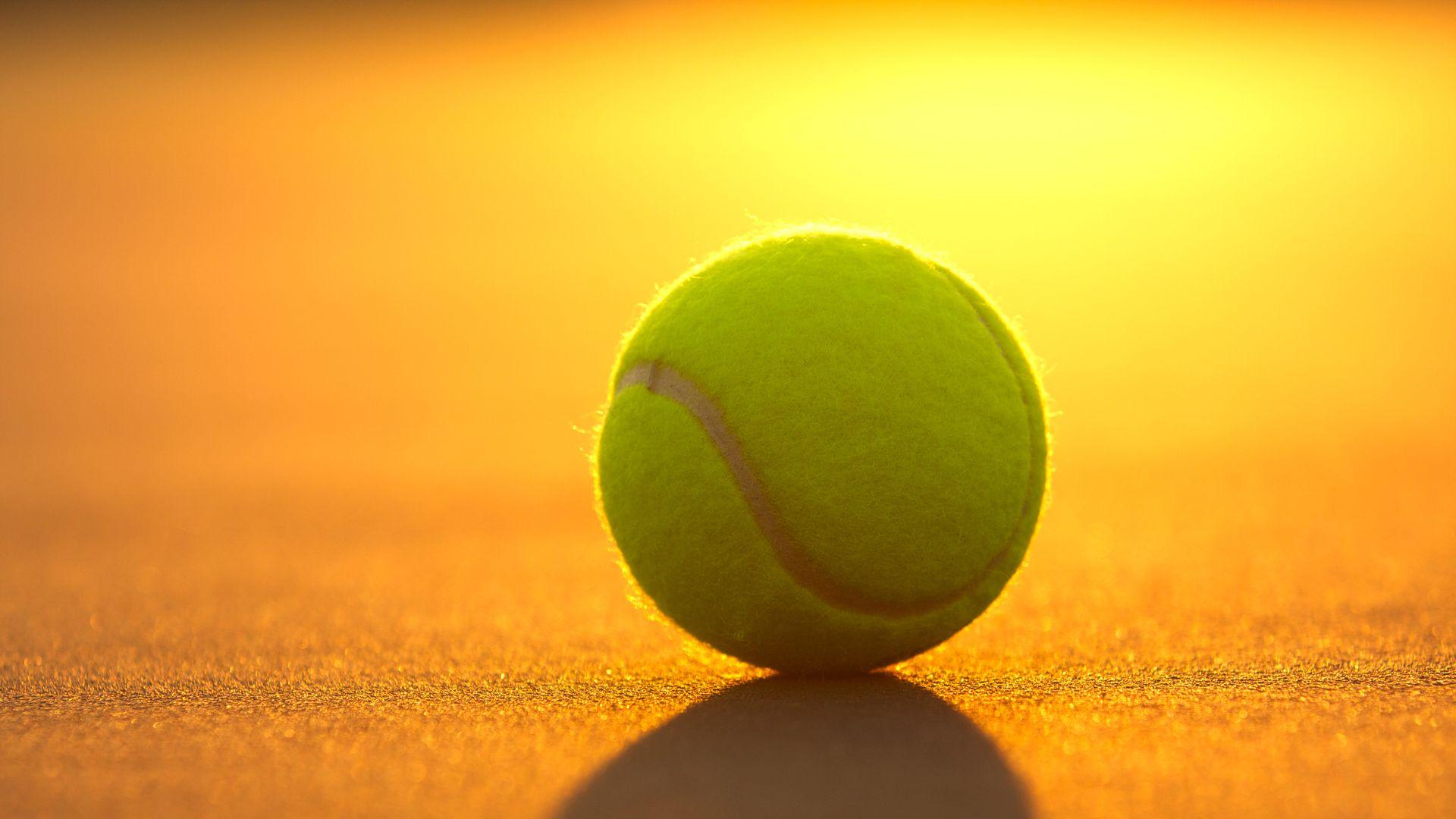 7 Rising Stars Of Men S Tennis In 2020 Tennis Wallpaper Tennis Photos Tennis