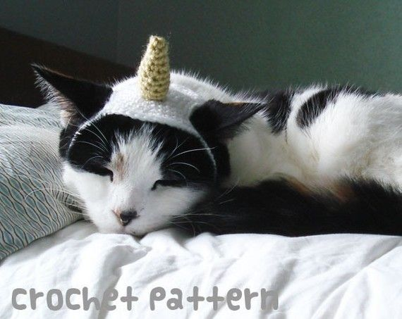 crochet pattern - unicorn horn pet hat - cat narwhal halloween costume amigurumi kawaii chihuahua fashion small dog - (instant download)