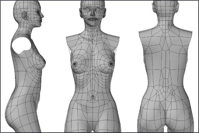 Featured image of post Female Body Topology