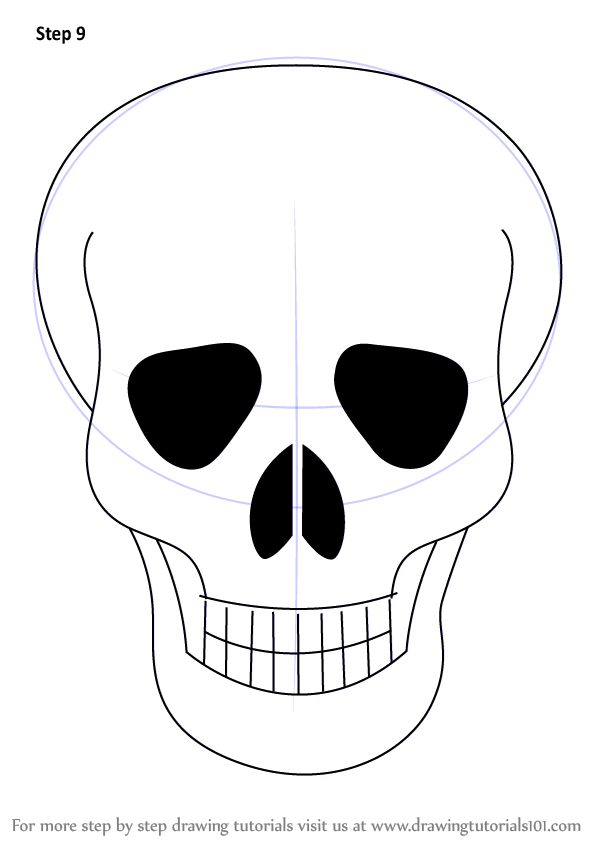 Skull Is A Structure Of Human Head It Is Very Easy To Draw It Like