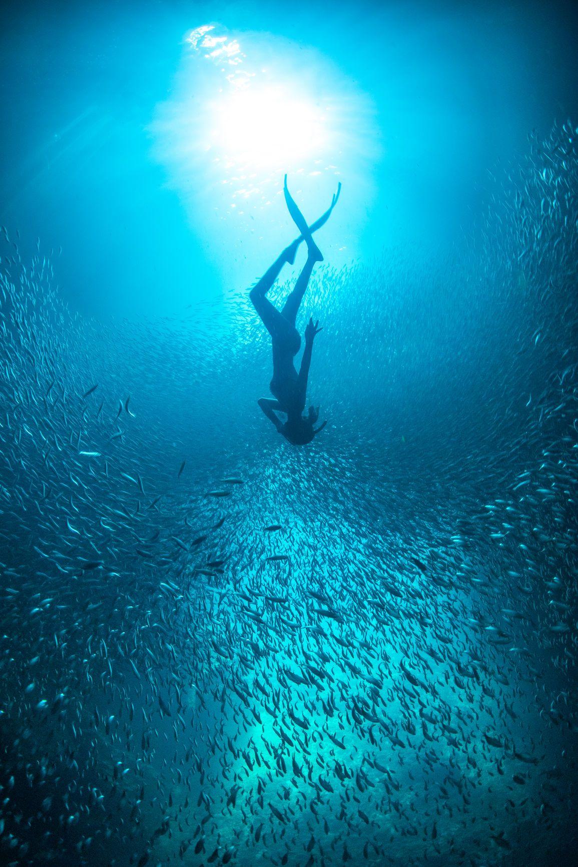 Park Art My WordPress Blog_Underwater Love Movie Online Free