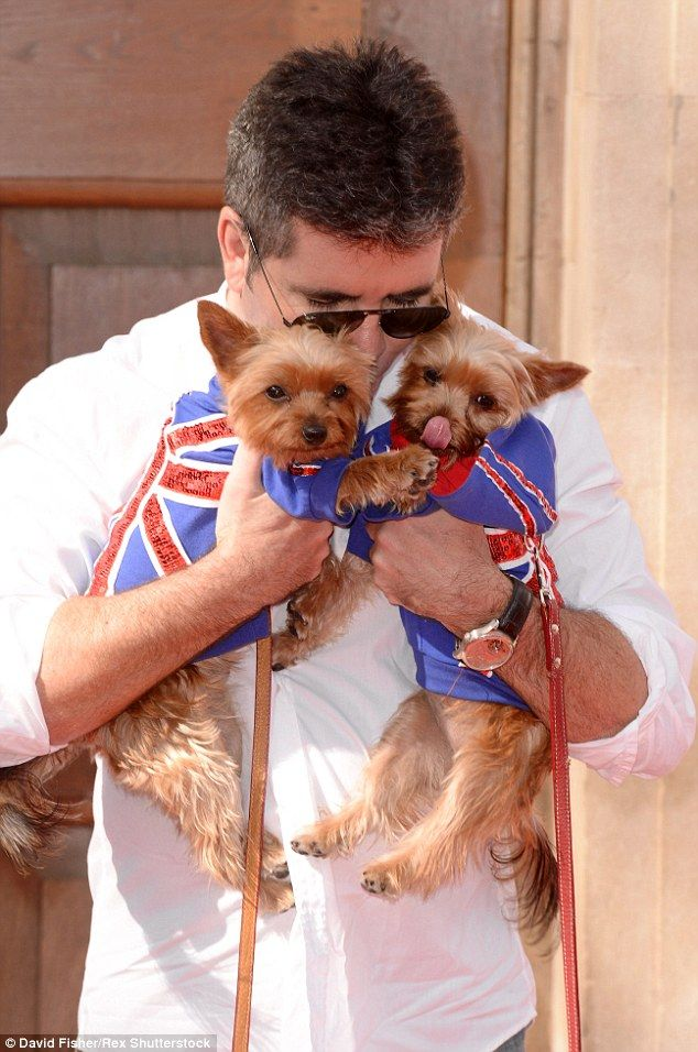 Puppy love Simon Cowell canu0027t bear the thought of being parted from his pet dogs Squiddly and Diddly and reportedly wants to clone the dogs  sc 1 st  Pinterest & Simon Cowell wants to u0027clone his pet pooches Squiddly and Diddly ...