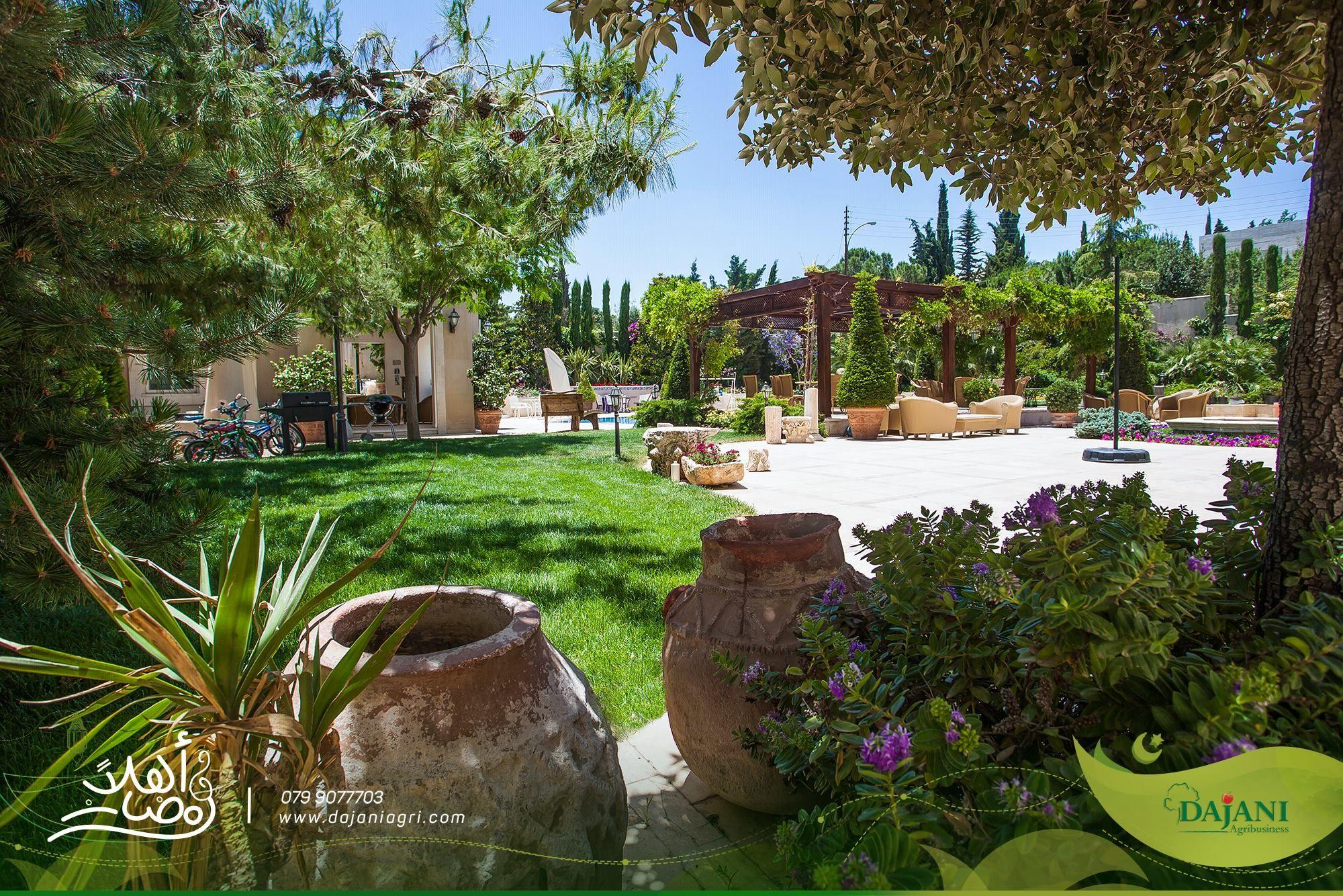 إبداع في التصميم وإتقان في التنفيذ Creativity In Design And Proficiency In Implementation Summer صيف شمس Lawnscape Landscape Plants Pictures