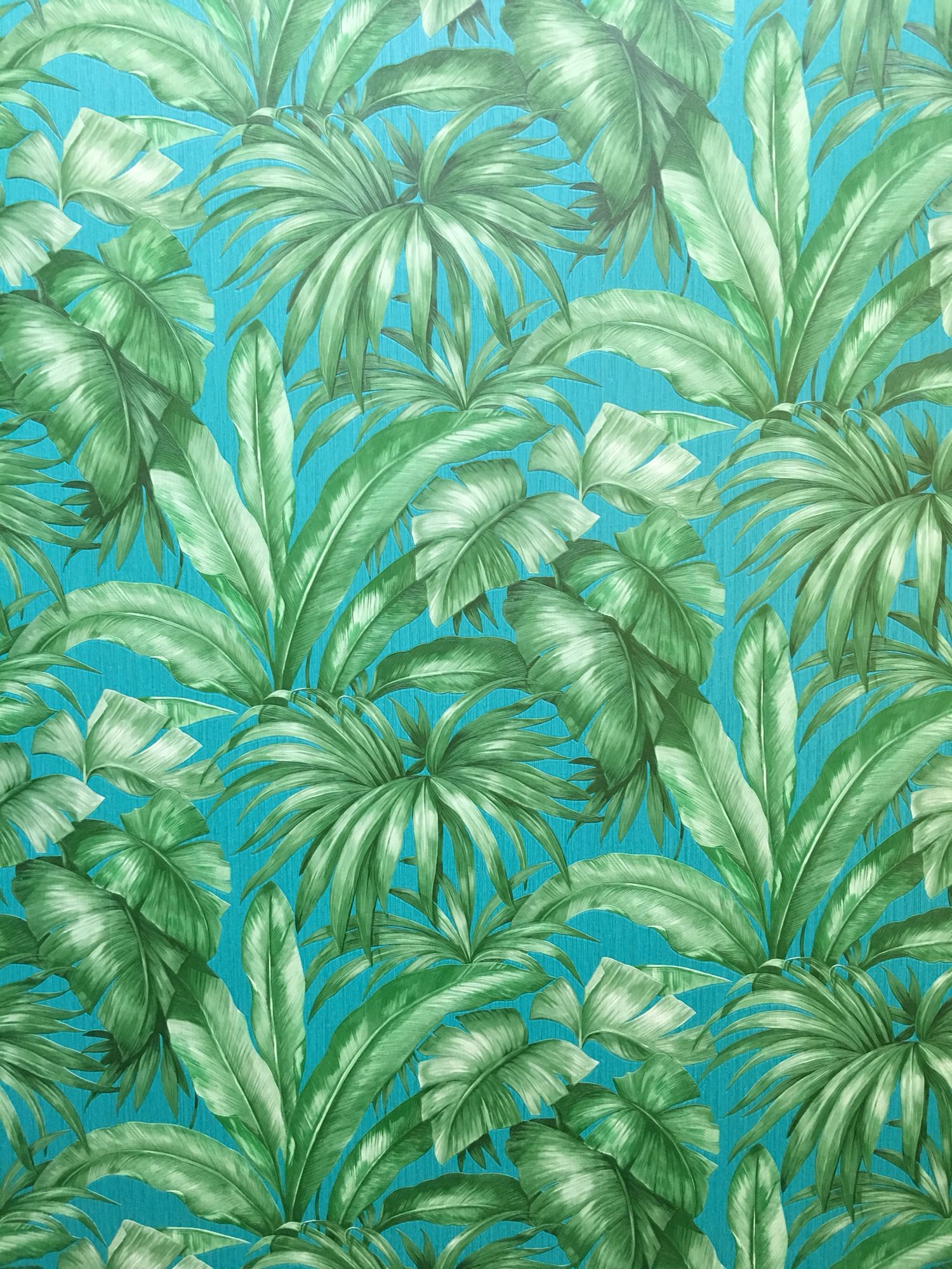 Versace Wallpaper A S Creation Palm Beach Interior Design Versace Wallpaper Palm Leaf Wallpaper
