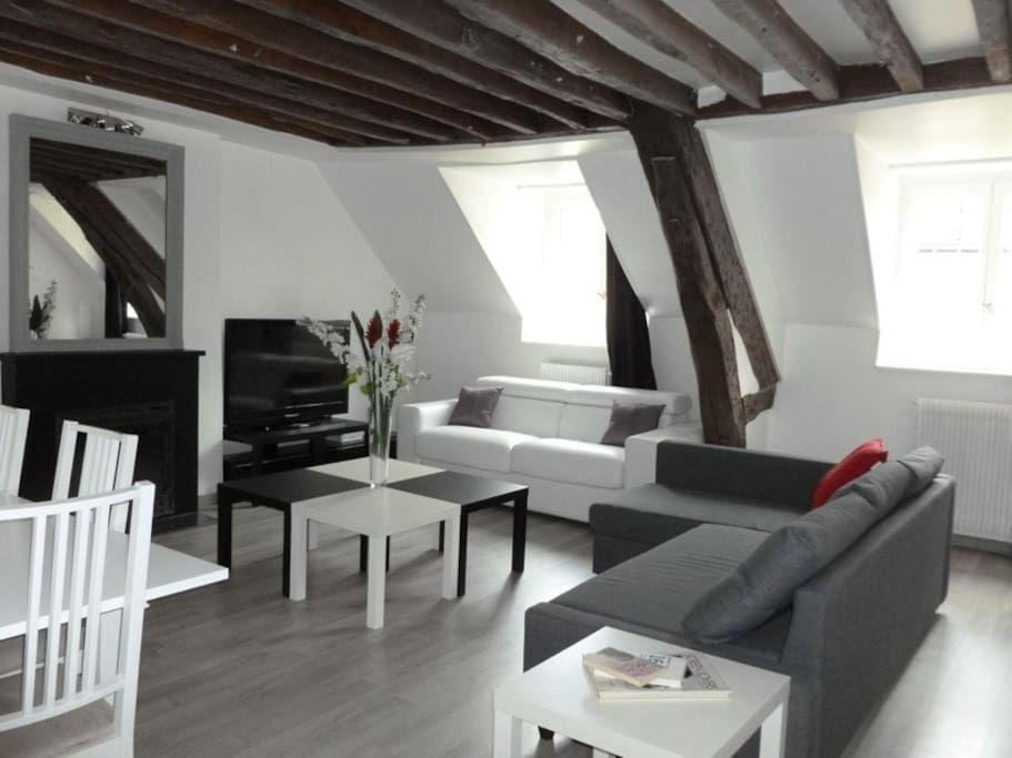 Entire home apt in Paris, FR Appartement de caractère 80m2, poutres