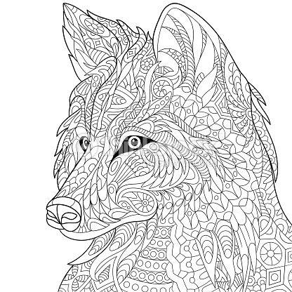 libro colorear adultos animales salvajes - Sök på Google | contorno ...
