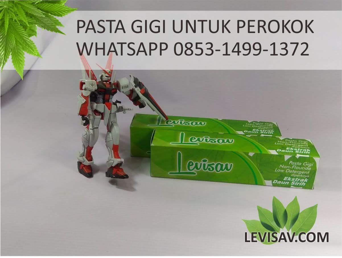 Efektif Wa 0853 1499 1372 Karang Gigi Ringan Gigi Herbal Pasta Gigi