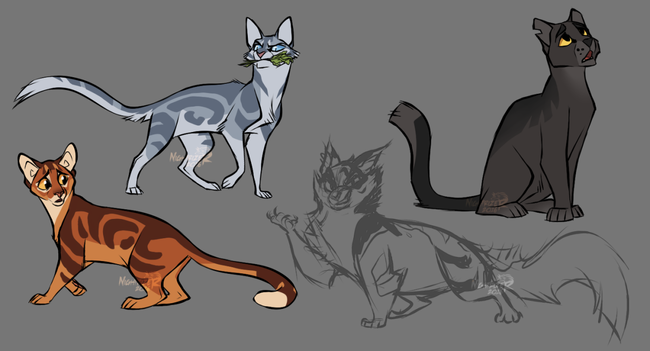 NIGHTRIZER Warrior cat drawings, Warrior cats books