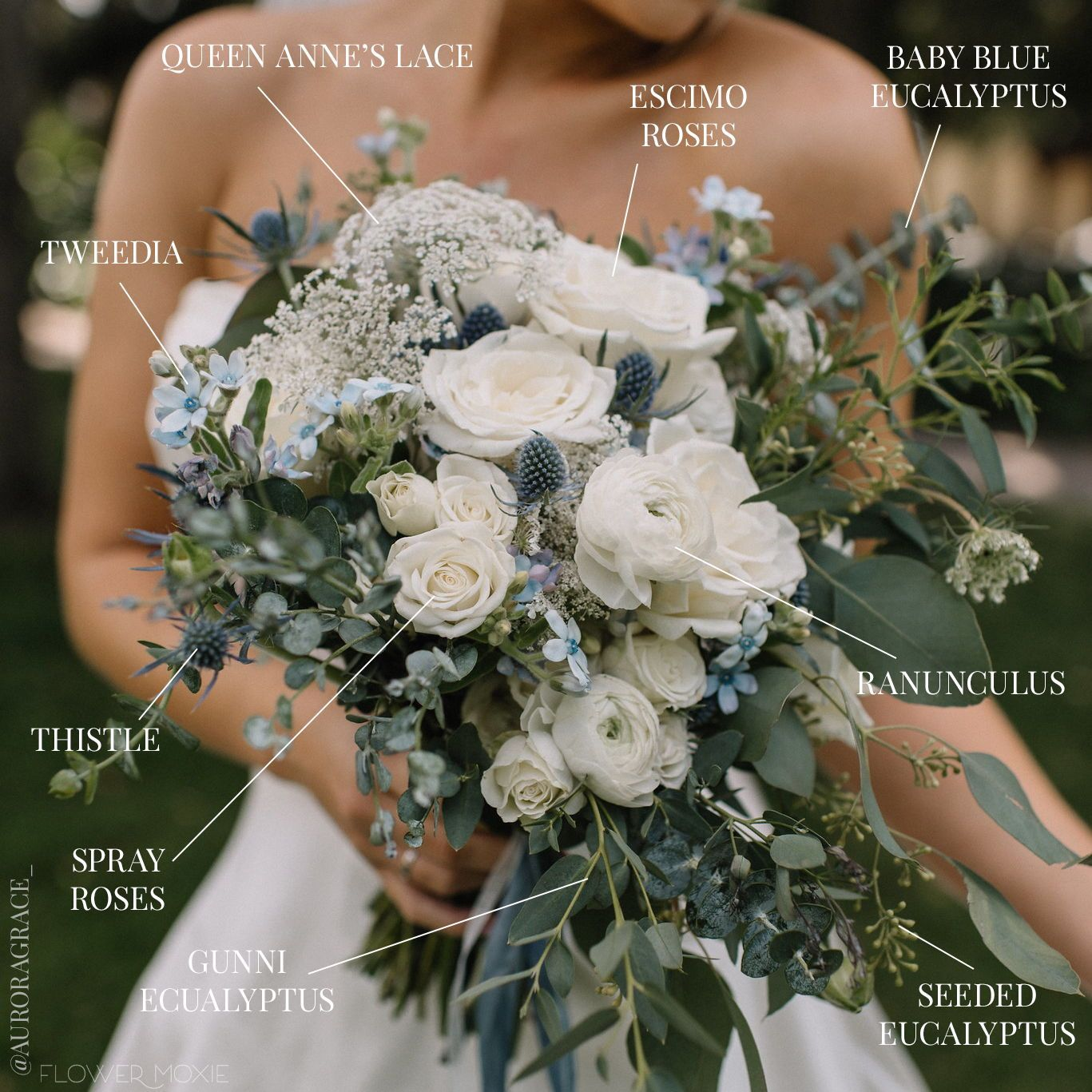 Dusty Blue Cream Wedding Flower Package Diy Bulk Fresh Wholesale In 2020 Cream Wedding Flowers Green Wedding Bouquet Black Wedding Flowers