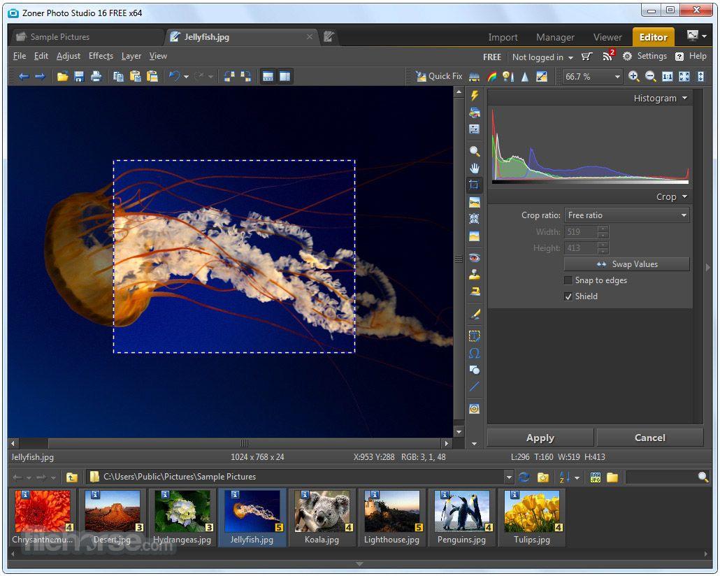 Программа zoner photo studio free скачать