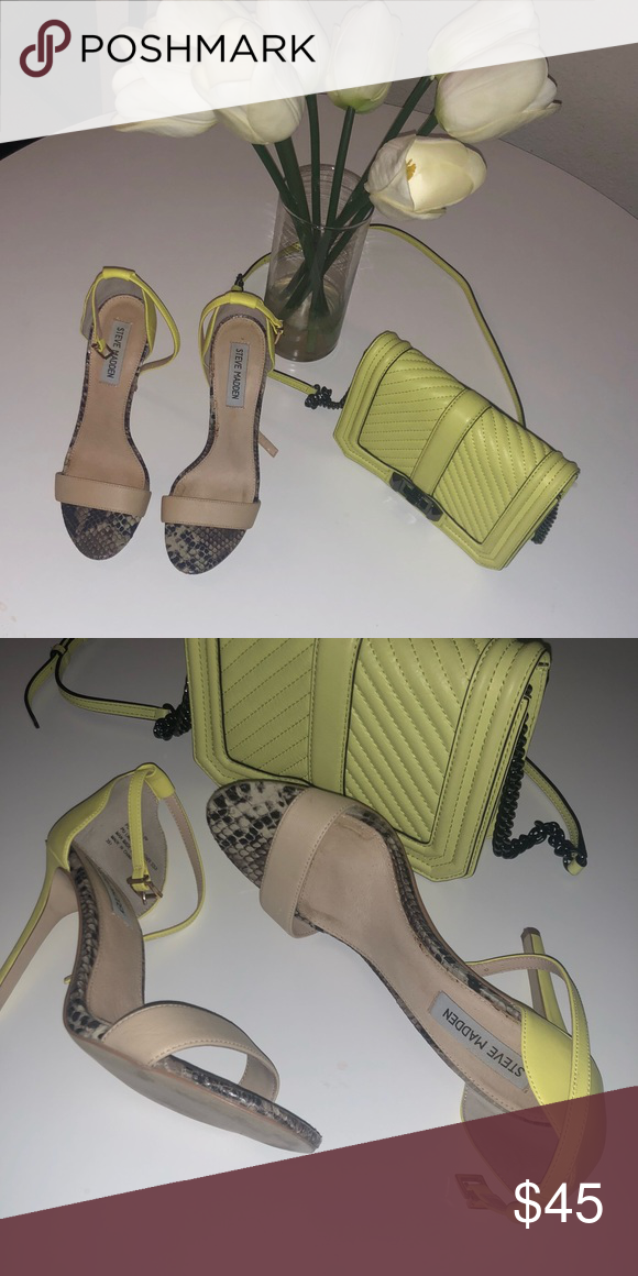 8be6676f5a9 Nude and Neon Steve Maddens Nude toe strap, neon heel, with snake ...