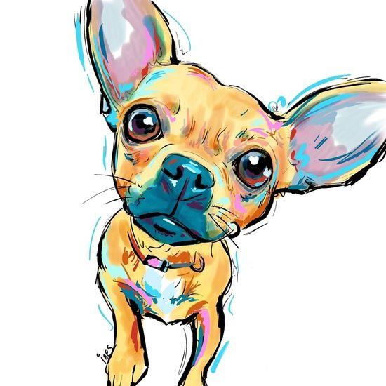 Chihuahua Face Art Print Risunok Sobaki Chihuahua Risunki Disneya
