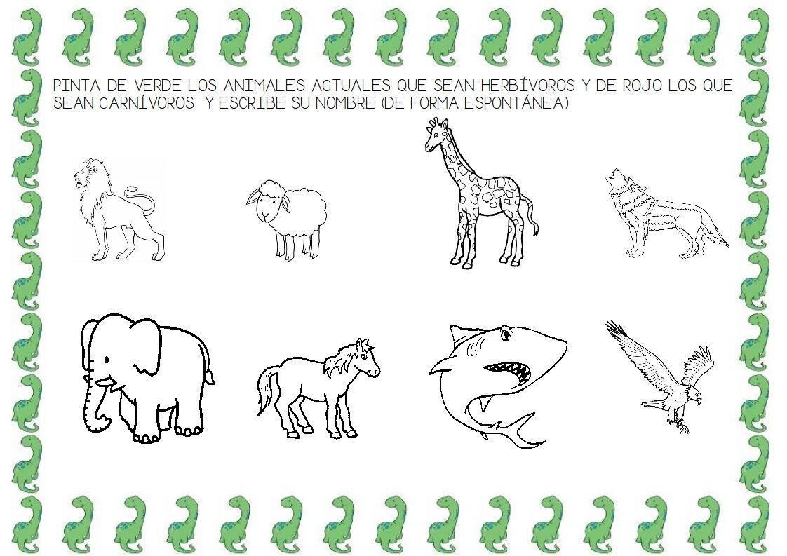 Animales Carnivoros Herbivoros Y Onnivoros Para Colorear Ninos Preescolar Buscar Con Google Proyectos Educacion Infantil Dinosaurios Animales Herbivoros