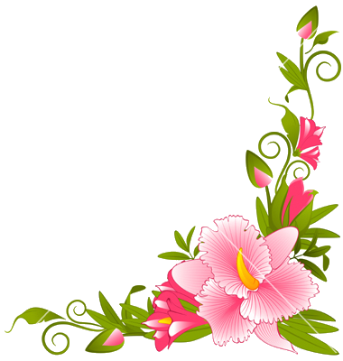 Flower Border Clipart Design Borders For Paper And Frames Pink