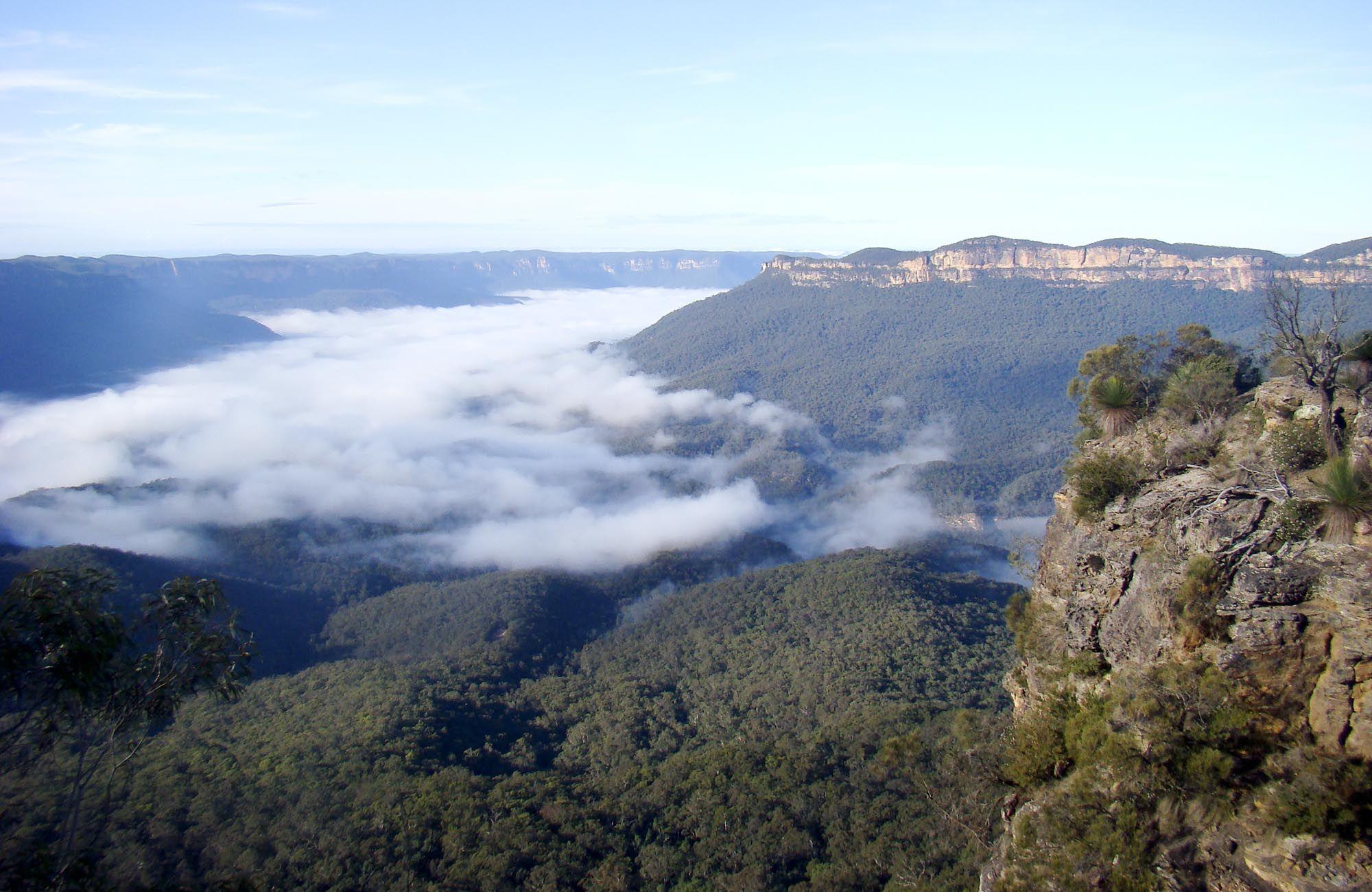 Blue Mountains National Park is my next destination,  24a9afc31c89e7690113d077dce2ea1d