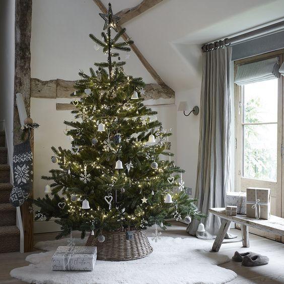 Get your Christmas tree! Christmas tree, Xmas and Holidays