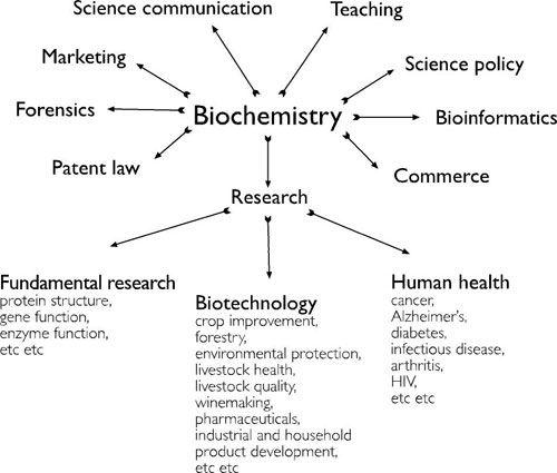 Biochemistry Bioqumica Pinterest