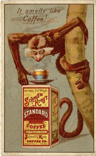 It smells like Coffee! Schnull and Krag's Standard Coffee. John and Jane Adams Trade Card Collection