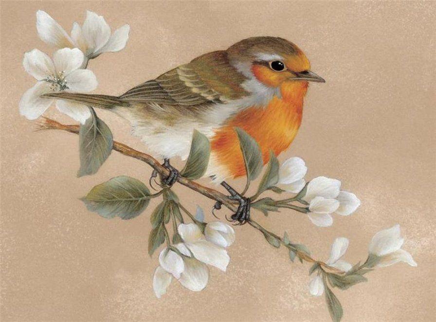 Картинки для декупажа птицы и яблоки блок
